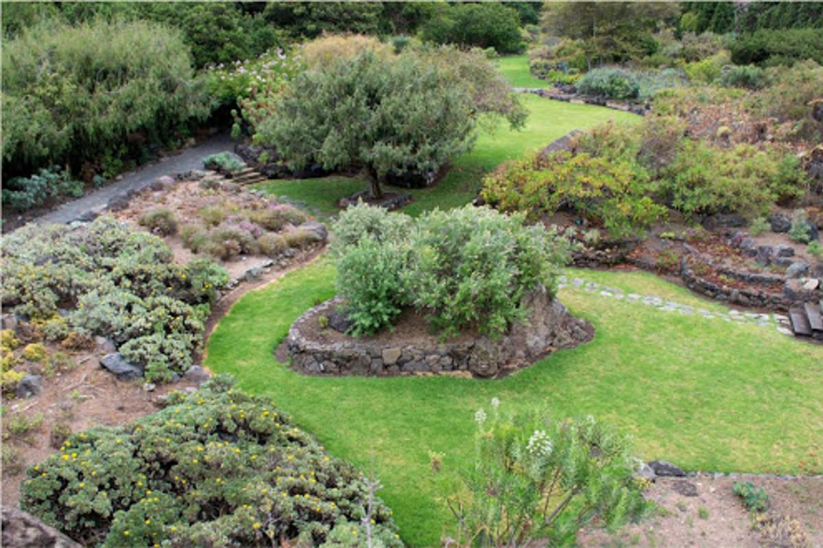 Kafe a botanická zahrada