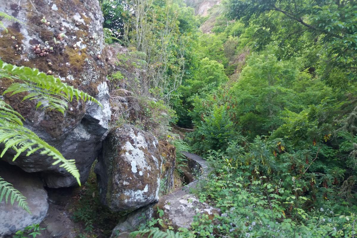 Cesta k vodopádům